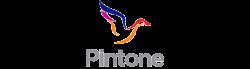 pintone1
